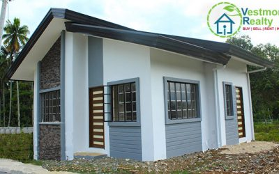 Diantha-D House and Lot for Sale at CrestView Homes, Mintal, Davao City