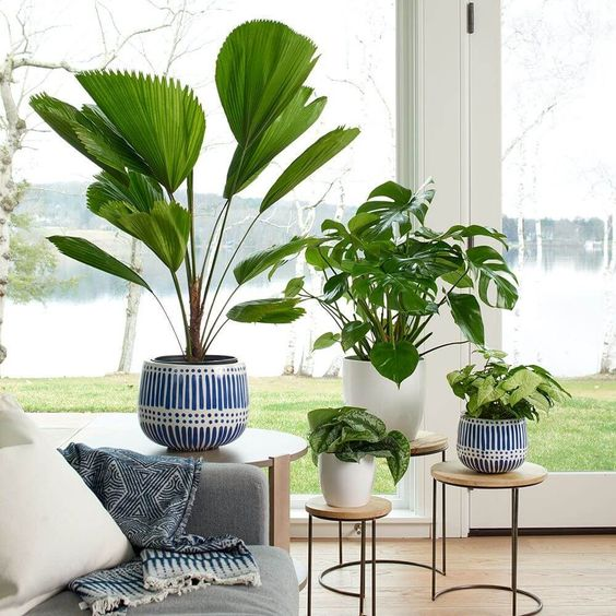 How To Rejuvenate The Space in your House - Practice environmental safety and inhale profound